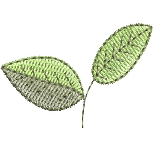 Folhas Limão - Ponto Cheio