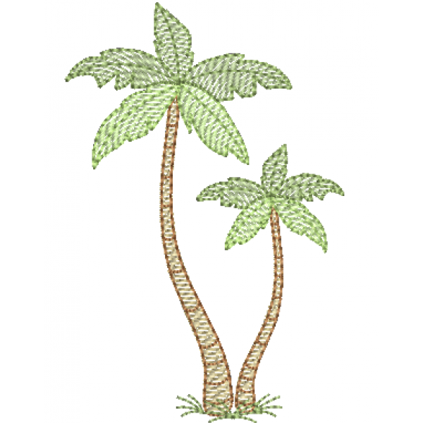 Coqueiro Palmeira 2 - Pontos Leves