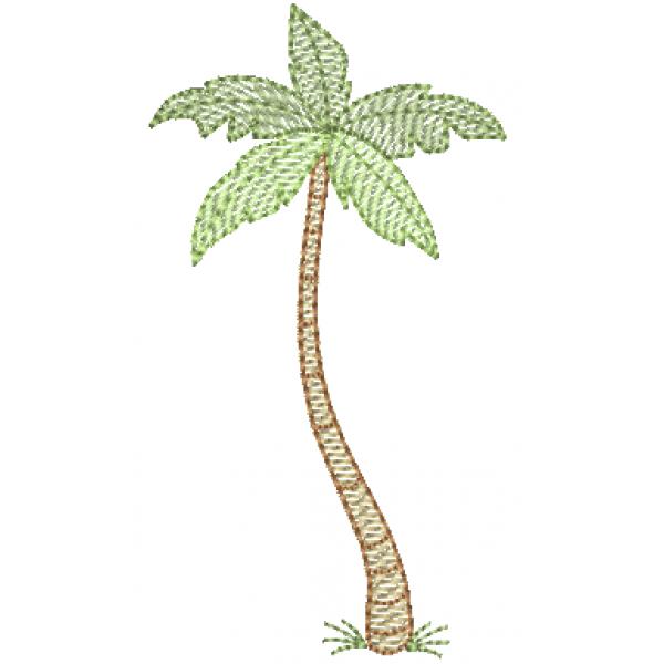 Coqueiro Palmeira 3 - Pontos Leves