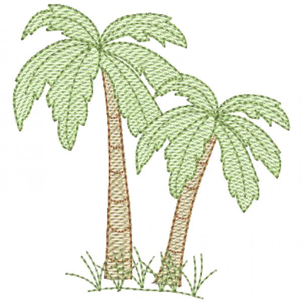 Coqueiro Palmeira - Pontos Leves